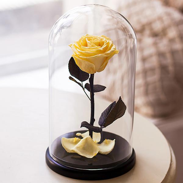 گل رز جاودان طلایی